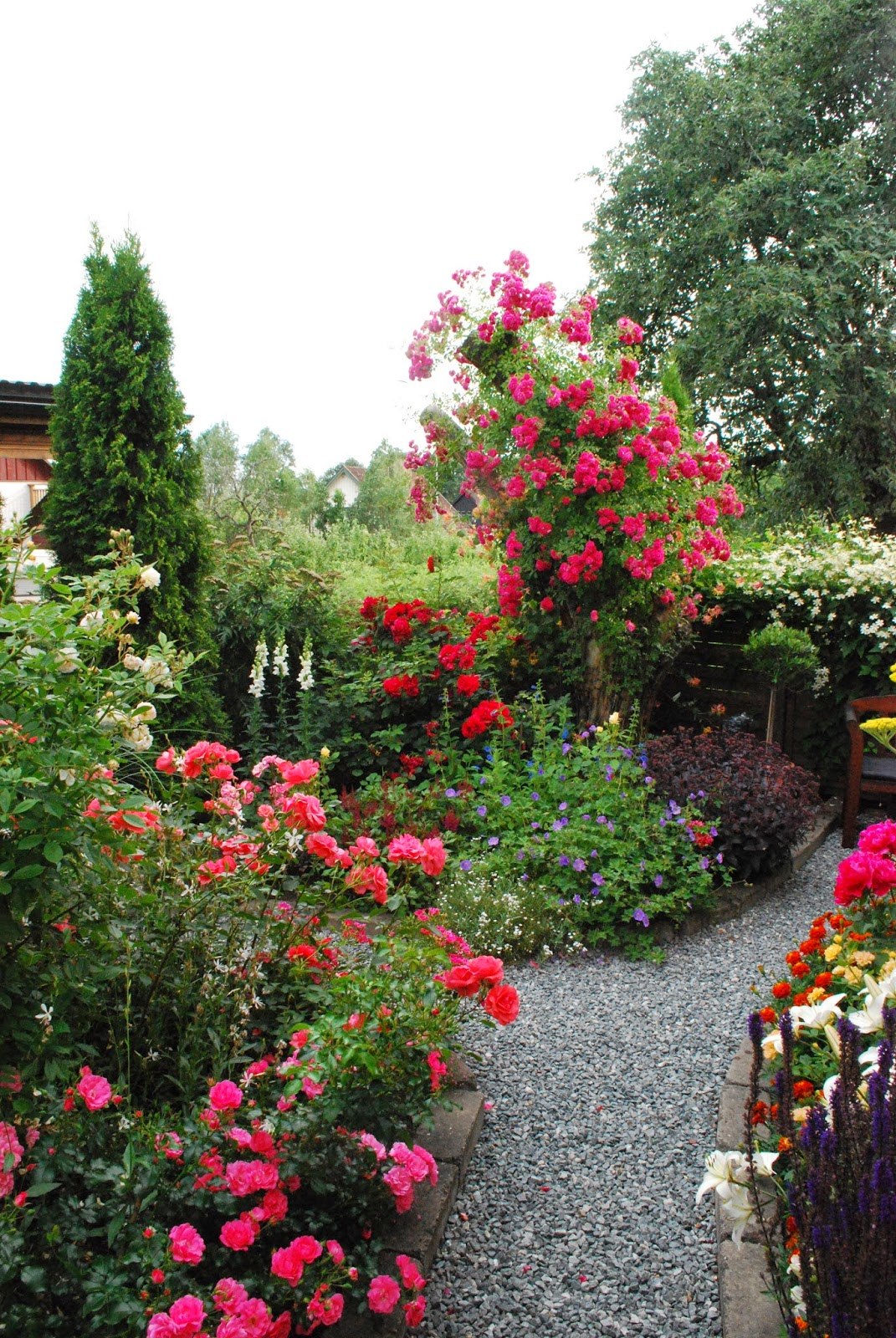 Merjas trädgård: 2014 jul 18