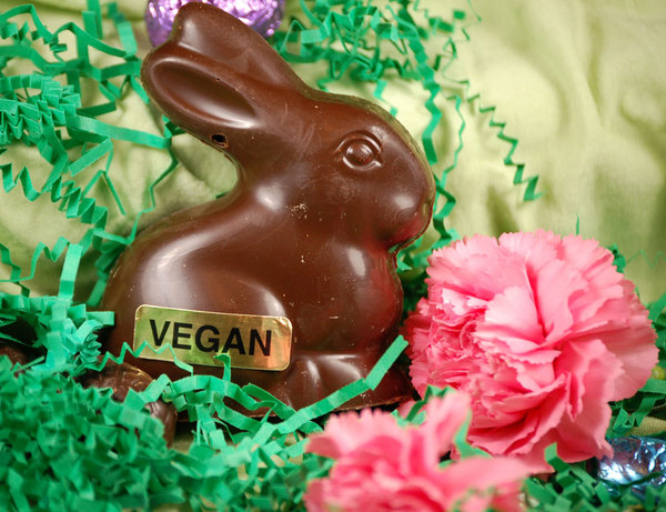Eco mamas guide to living green easter bunny finds no sugar easter bunny finds no sugar basket ideas negle Choice Image