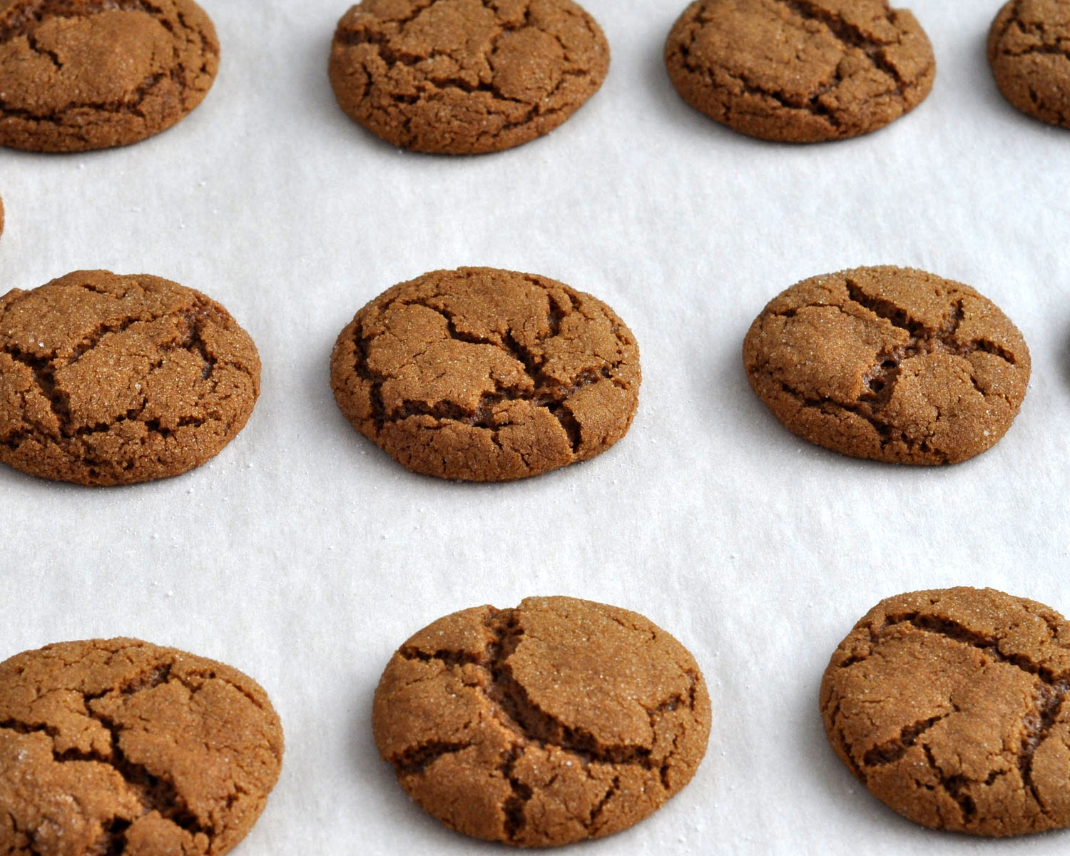 Gingersnap Cookies Recipes — Dishmaps
