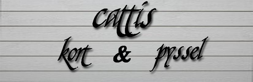 Cattis Kort och Annat