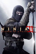 Ninja Shadow of a Tear (2013)
