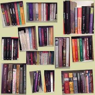 Biblioteczka z polskimi autorami