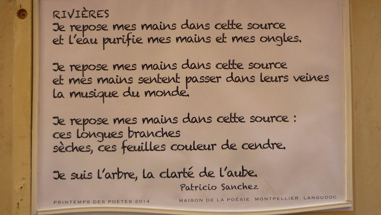 Rivières - Patricio SANCHEZ