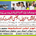 Royal Aviation Institute Sialkot Courses