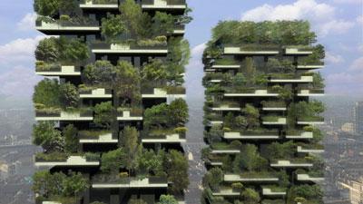 Menara pokok - Hutan di langit yang pertama di dunia