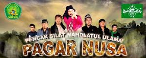 Pencak Silat NU Pagar Nusa Gudo Jombang