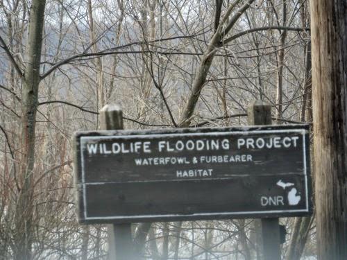 Wildlife management area
