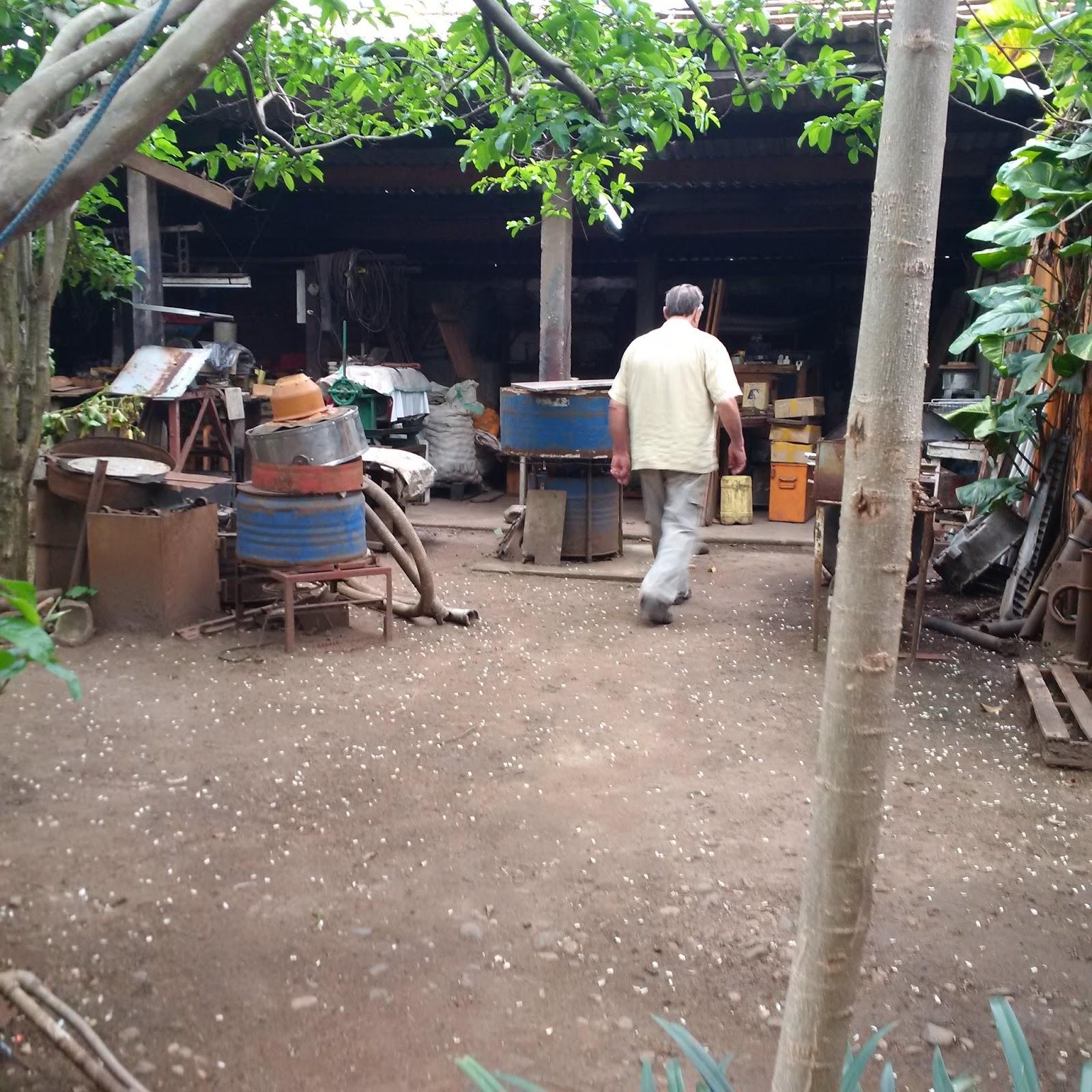 Leptitludeparlemonde un jardin extraordinaire for Jardin extraordinaire nancy 2015