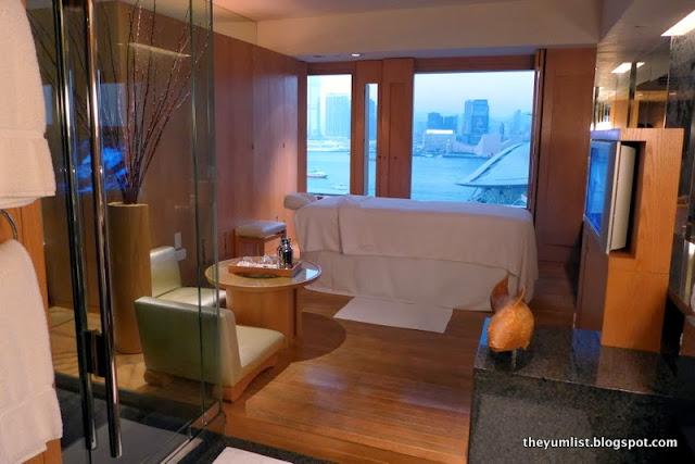 Daytime View from Grand Hyatt Hong Kong