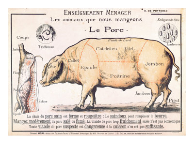 cuts of pork illustration from a french domestic science manual by h de puytorac 19th century ... on Texas's sex offenders list. Including their mugshot, was their city, ...