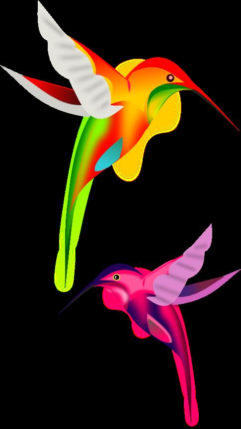 colibríes en vectores