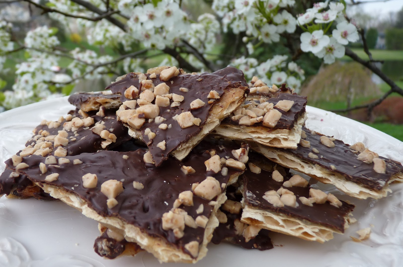 Matzo Chocolate Toffee Bark
