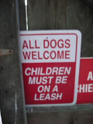 perros permitidos niños con correa