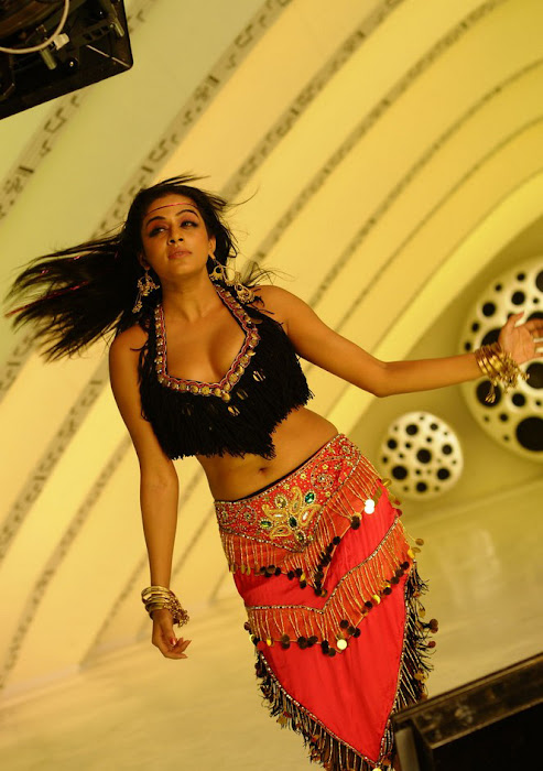 priyamani spicy , priyamani from ragada movie hot images