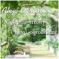 Najlepsze strony i blogi ogrodnicze