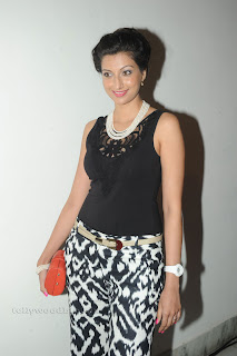 Hamsa Nandini pos at attarintiki daredi audio 029.jpg