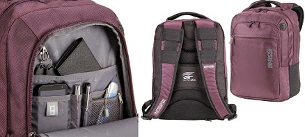 Great Deal: American Tourister Citipro 8 Fabric Laptop Bag (Purple) worth Rs.2450 for Rs.1225 Only @ Amazon (Valid for Today Only)