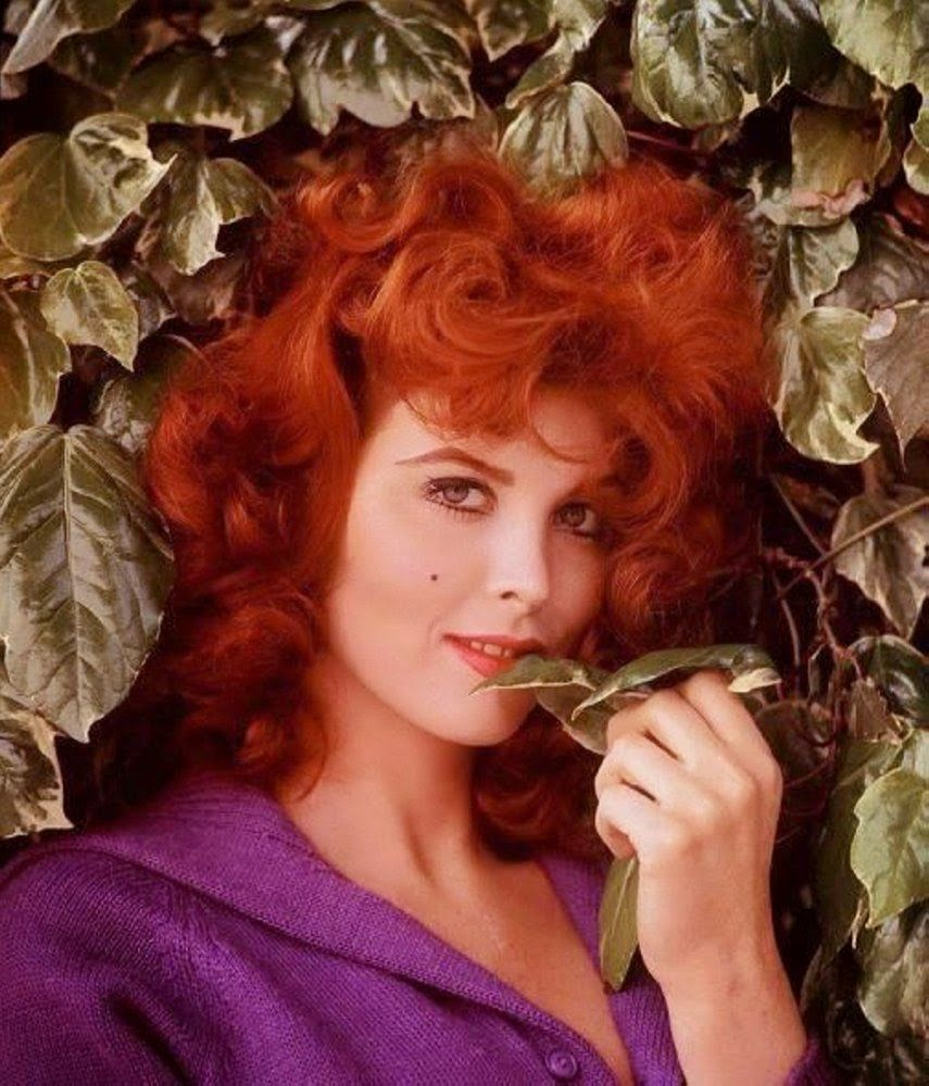 Tina Louise via Lexi DeRock of Voluptuous Vintage Vixen Blog