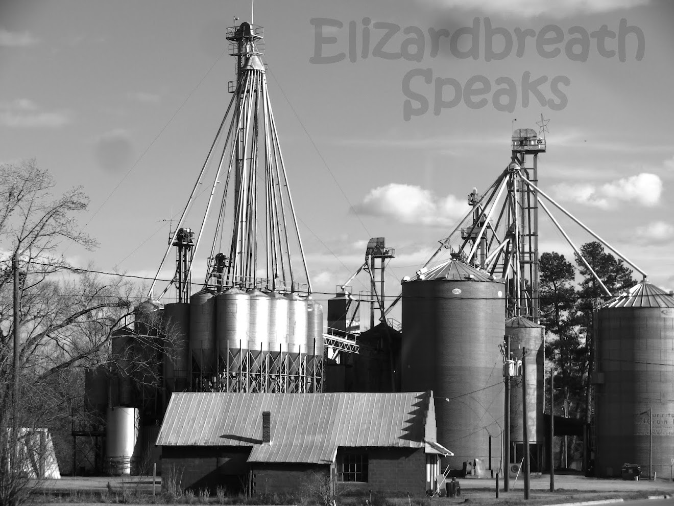 North Carolina grain feed business
