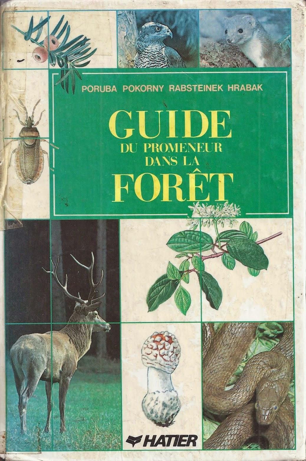 Guide du promeneur dans la forêt
