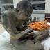 Mumi Biksu Ditemukan Dalam Posisi Lotus