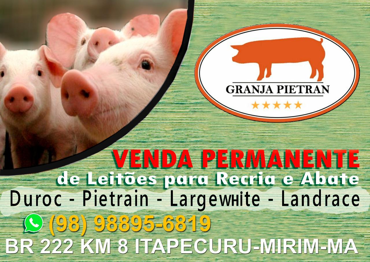 GRANJA PIETRAN/ITAPECURU