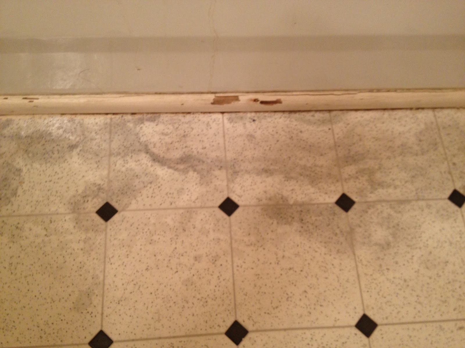 Outside The Rat Race Bathroom Repair - How to repair bathroom floor