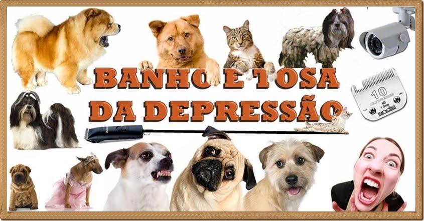 Banho & Tosa da Depressão