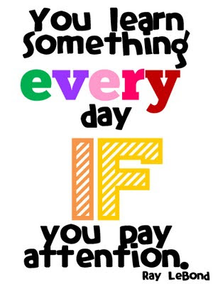 You learn something every day if you pay attention. Ray Lebond