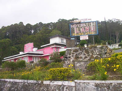 Image result for hotel lawu sarangan