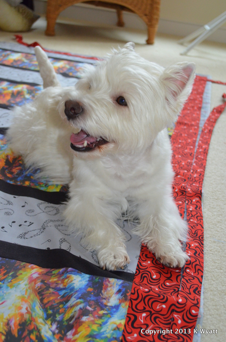 Westie Julep Quilting Projects Completed