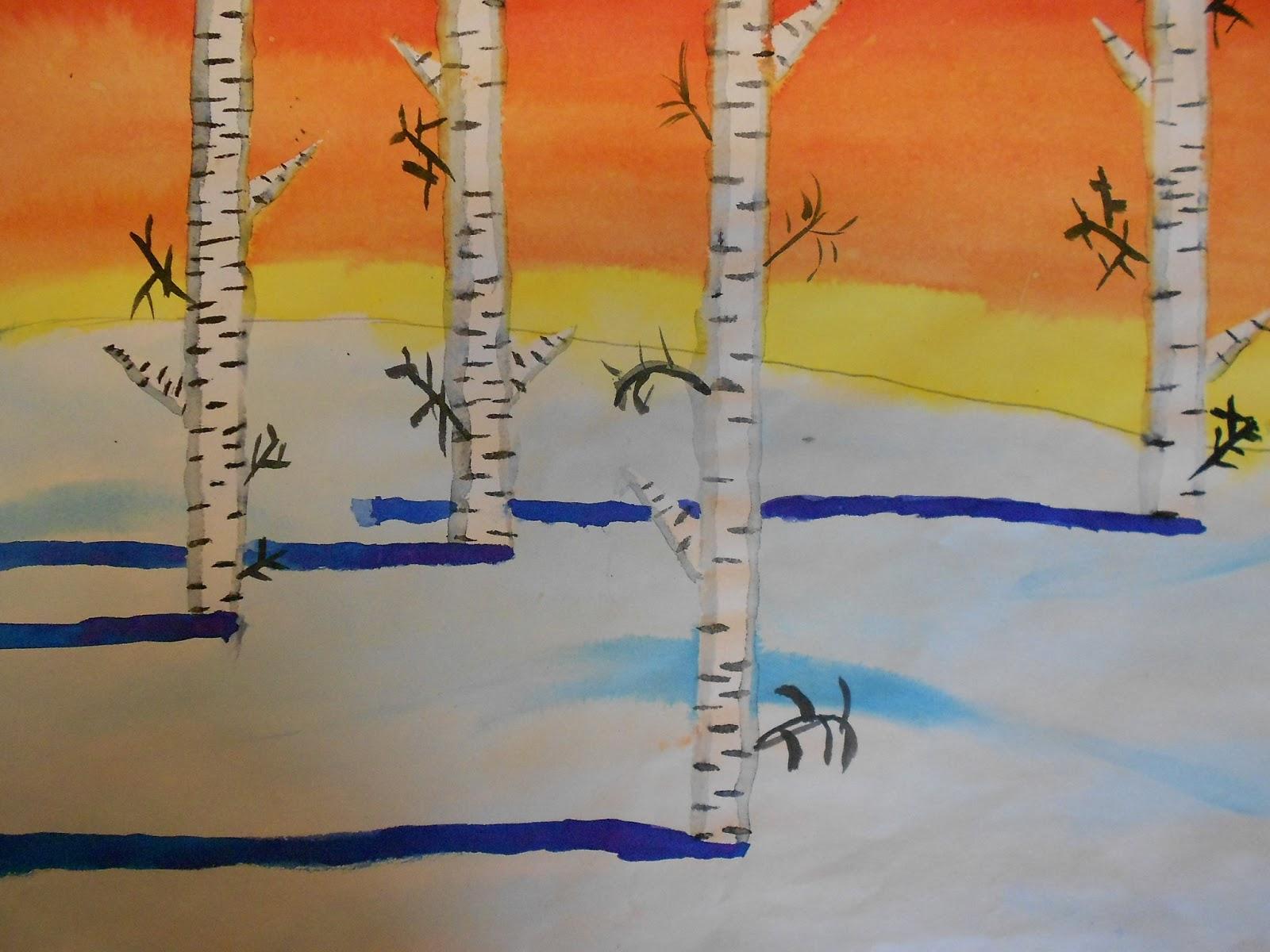 Birketræer - sommer og vinter