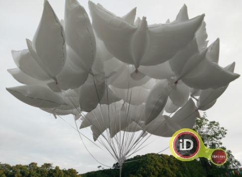 Balon Gas Burung Merpati Untuk Prewedding