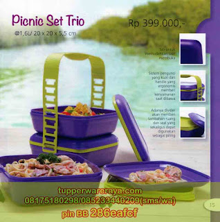 TupperwareRaya-Katalog Tupperware Promo April 2013, Picnic Trio Set
