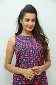 diksha panth sizzling photo shoot-thumbnail-18