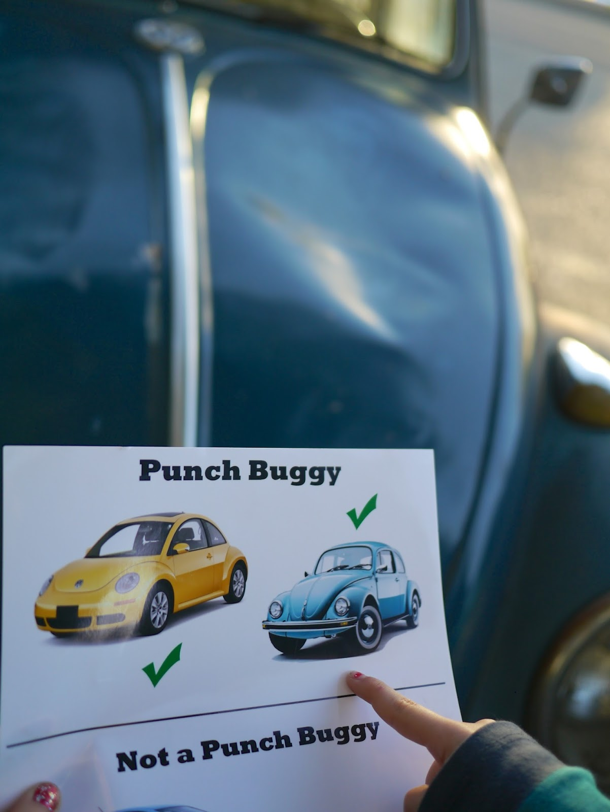 Little Hiccups Punch Buggy Field Guide