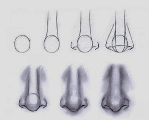 El arte de Arantxa: Como dibujar una nariz