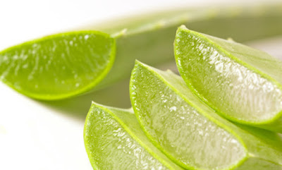 How to lose weight with aloe vera