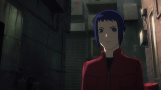 Anime / Manga: Ghost in the Shell Arise [Border 1: Ghost Pain