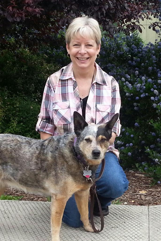Skagit Humane Society Dogs