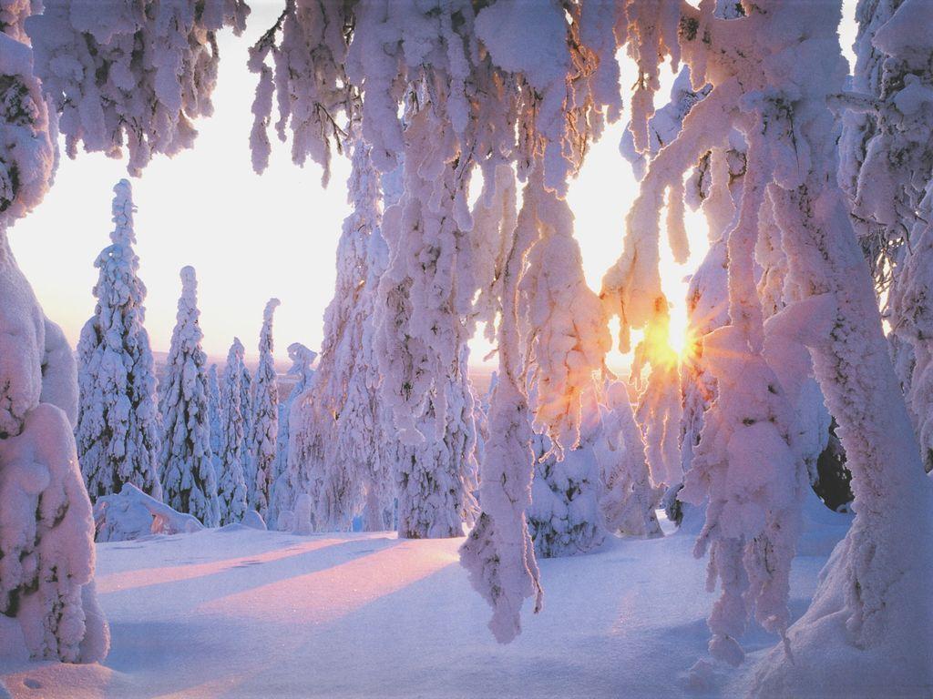Best wallpaper collection best winter wallpapers for Sfondi invernali per desktop gratis