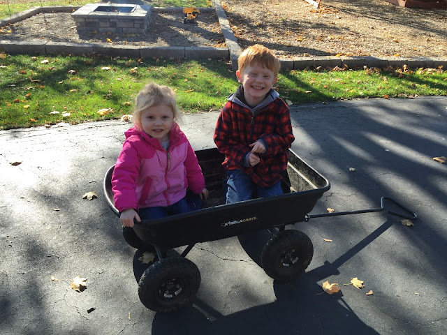 Stella & Porter in the Wagon