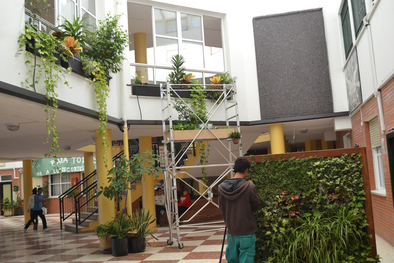 Jardines verticales y muros verdes ies heliche novedades for Jardin vertical colgante