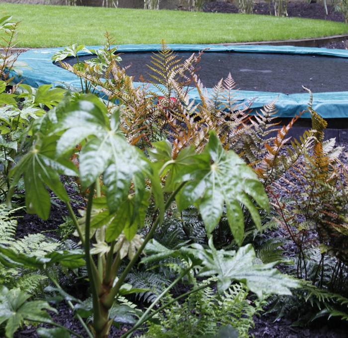 Backyard Mulch Jump : greencube garden and landscape design, UK Does every family garden