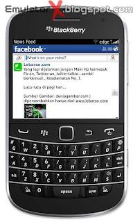 Blackberry Simulator