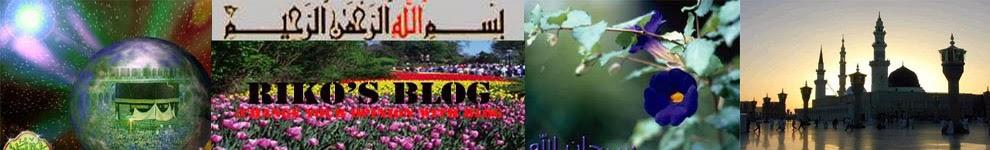 Riko Blog's