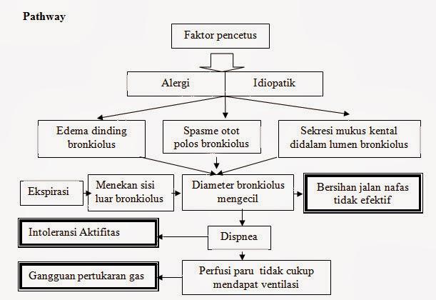pathway asma