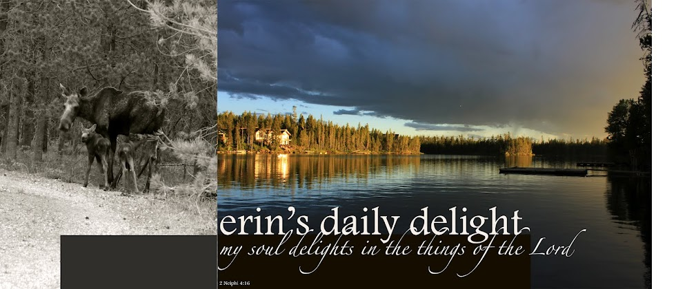 erin's daily delight