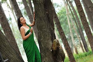 Actress-Nikitha-Narayan-high-resolution-Hot-Saree-Wallpaper-Photos_actressphotosgalleryhub.com_03.jpg