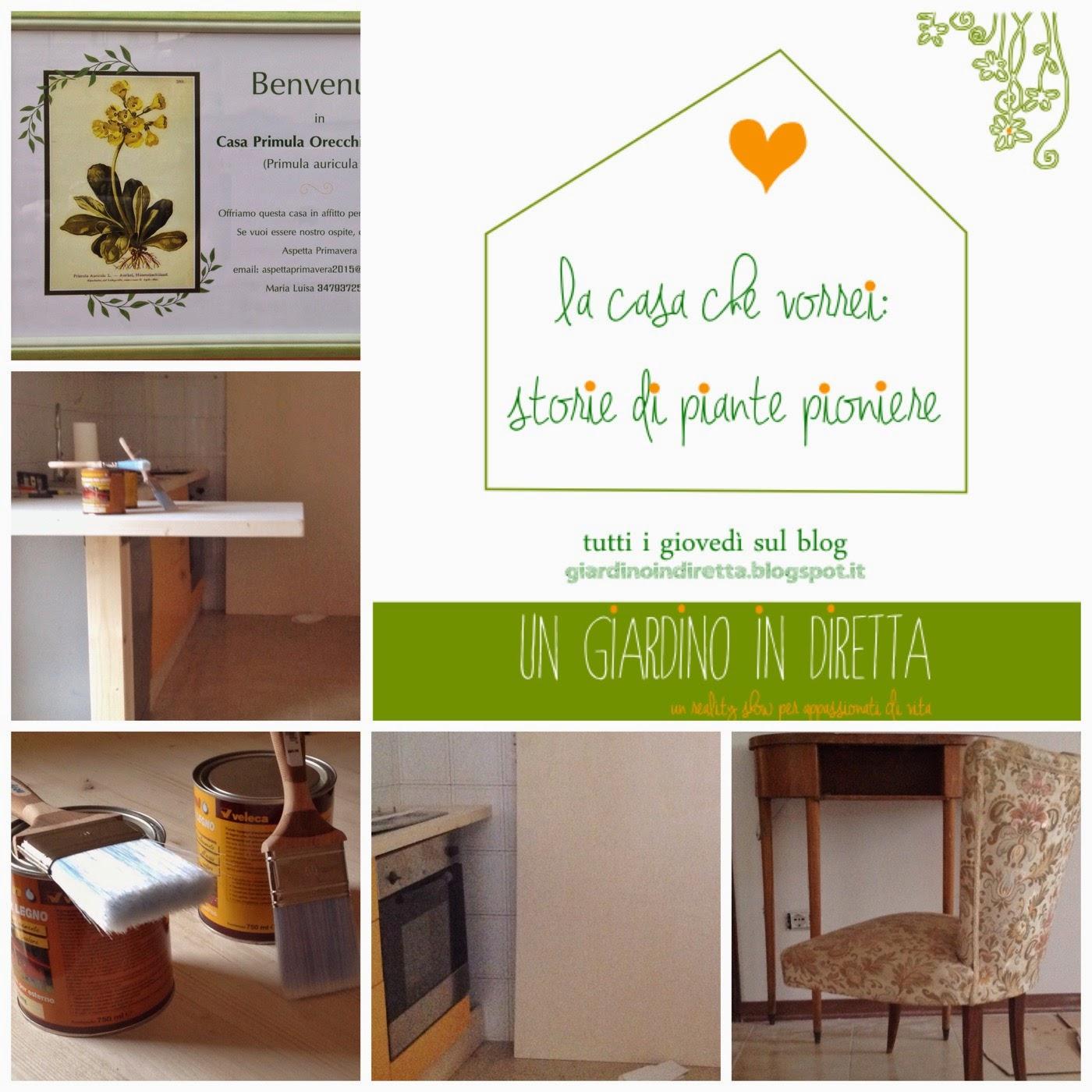 La casa che vorrei storie di piante pioniere sesta - Vorrei ristrutturare casa ...